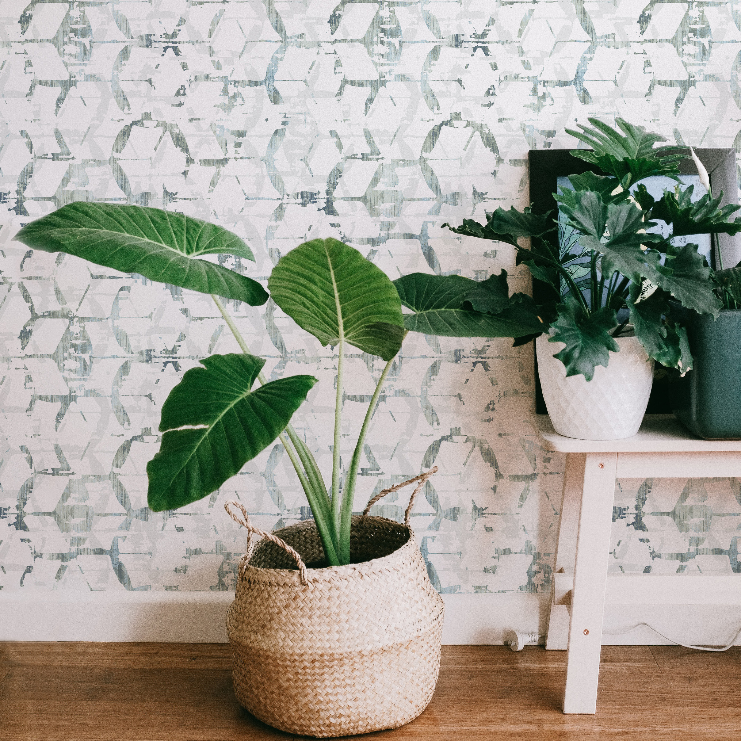 Tropical Plants with Augustine Pacifica Wallpaper